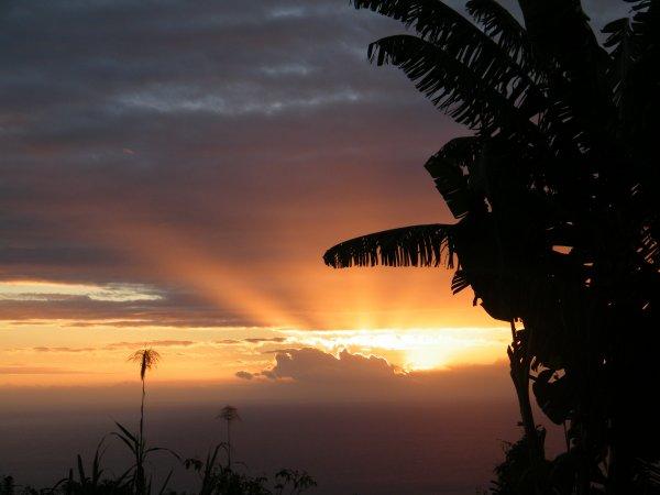 Article posté il y a quatre ans,au lancement de mon projet,qui se termine à l'instant ...Première sortie à Crozon (29) à la fin de ce mois d'Avril 2014.                                                              Sur l'ile de La Réunion...(Photo: Aerostef37)