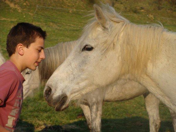 Je posterai maintenant plus que des photos de Lobo et moi, avec des amis.. :)