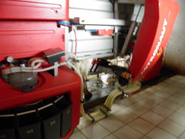 UN ROBOT A TRAIRE LES VACHES