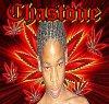 chastone705