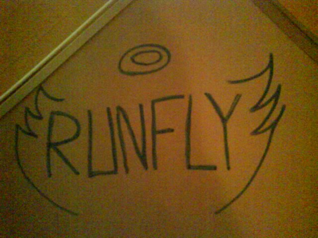 Team-Runfly