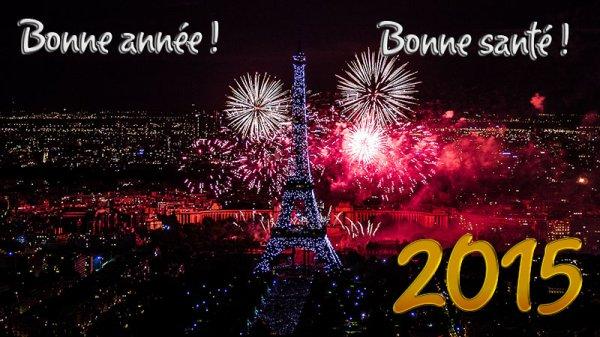 Bonne année 2015. :*<3