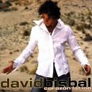Photo de davidbisbal1
