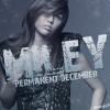 Permanent December
