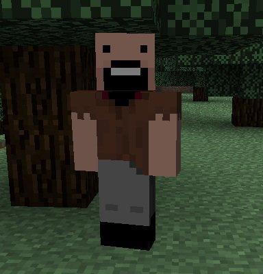 Minecraft, c'est quoi?
