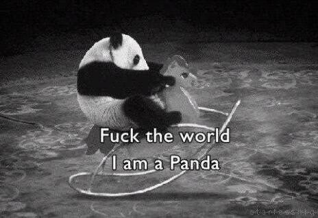 Pandaw *-*