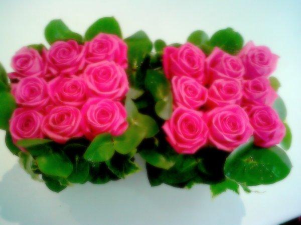 Mes carrées de roses =D