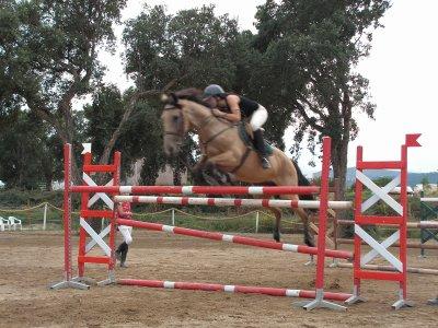 centre equestre u canale