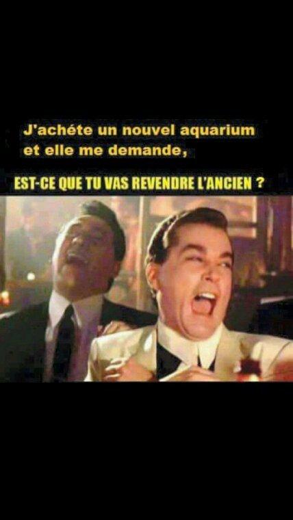 J'achète un nouvel aquarium