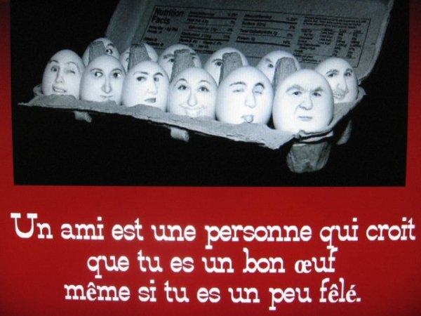 """^^   Serge Gainsbourg : """"L'ami caouette"""""""