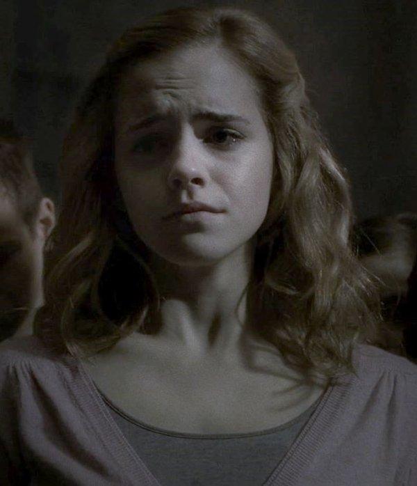 Chapitre 2:La betise d'Hermione