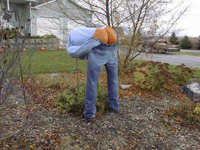 Quelques images sympas d'Halloween.!!!!!!!
