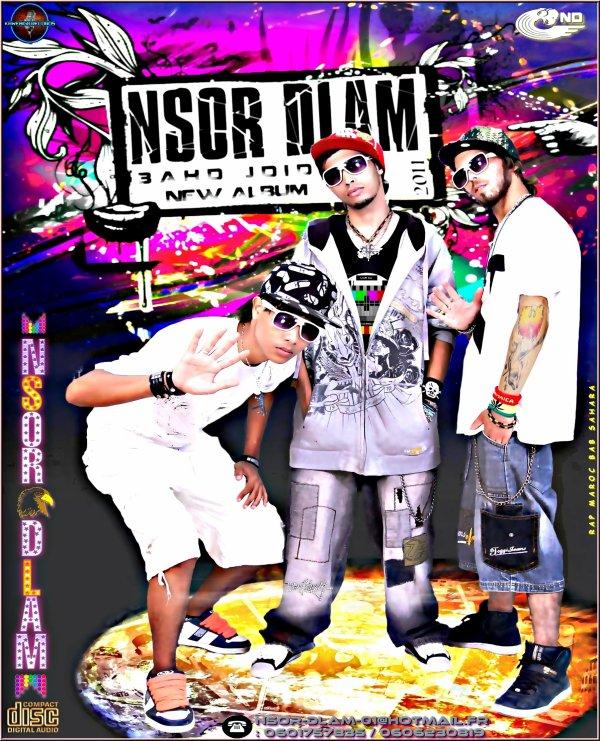 new nsor dlam 2011