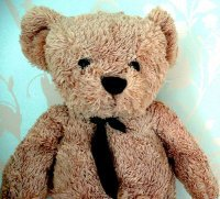 Misery Bear