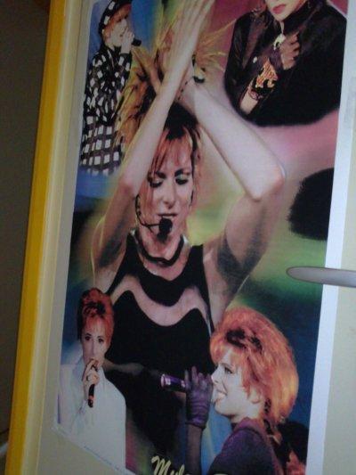 voici un de mes poster géant en refle de velour !!