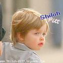Photo de Shiloh-PlTT