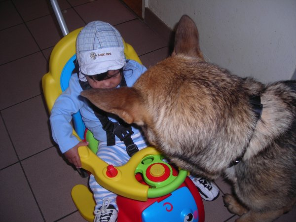 mon petit fils kheiron et mon chien polo patricia
