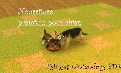 Nintendogs Cats Nourriture