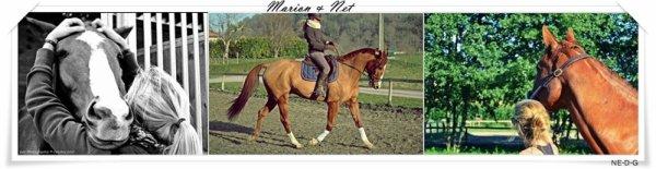 Marion & Net