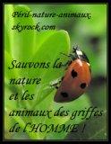 Photo de Peril-nature-animaux