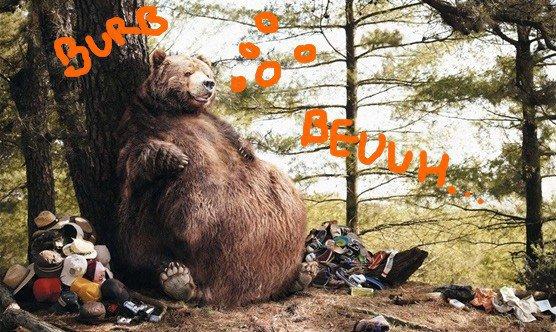 Un ours vraiment trop gourmand