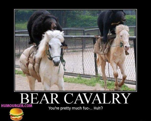 Deux ours qui fond de l'équitation