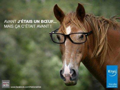 Un drôle de cheval