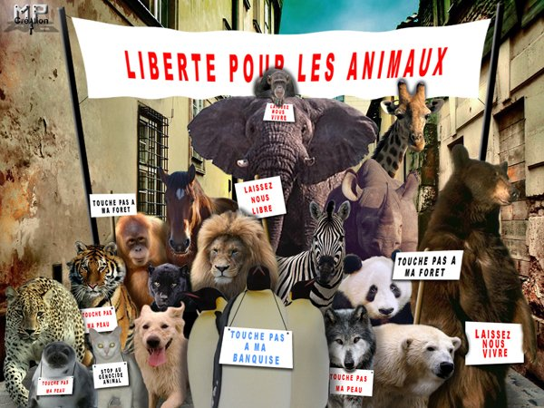 Manifestation du 1er mai des animaux