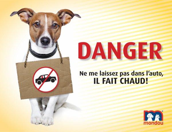 DANGER CHALEUR !!!!!