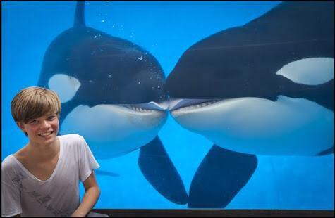 Ronan Parke avec des orques