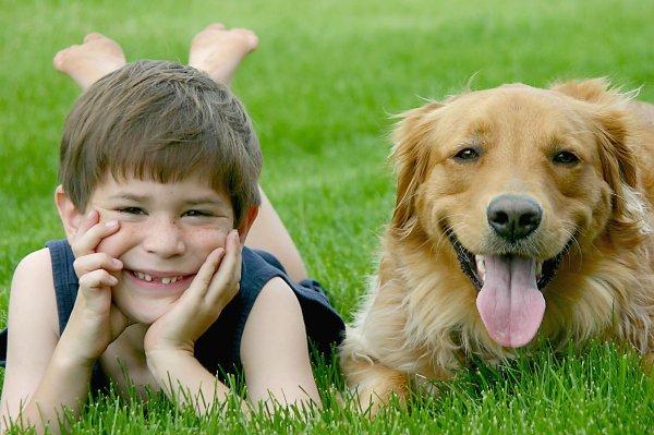 Un chien avec un enfant