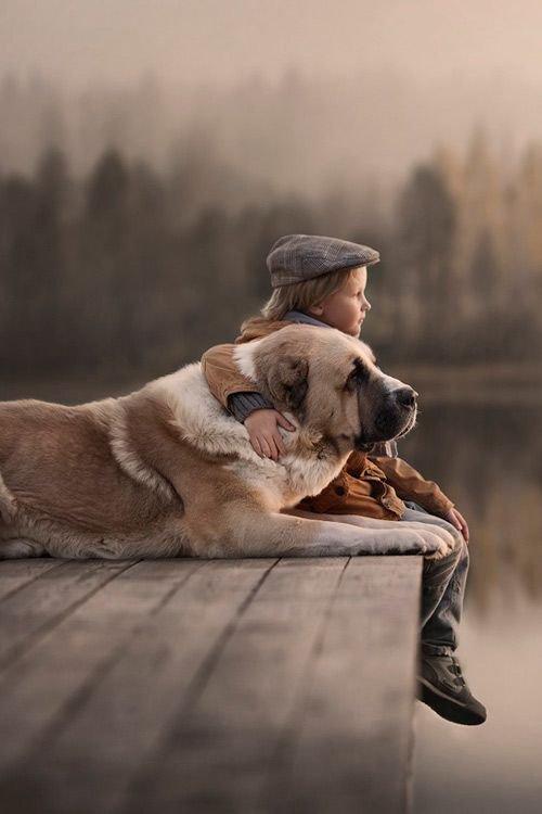 Un chien avec son jeune maître