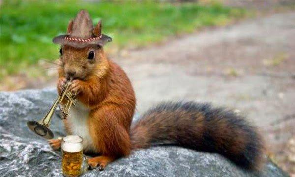 Un écureuil festif