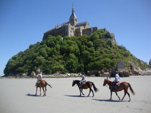 Le Mont Saint Michel et les animaux (1/3)