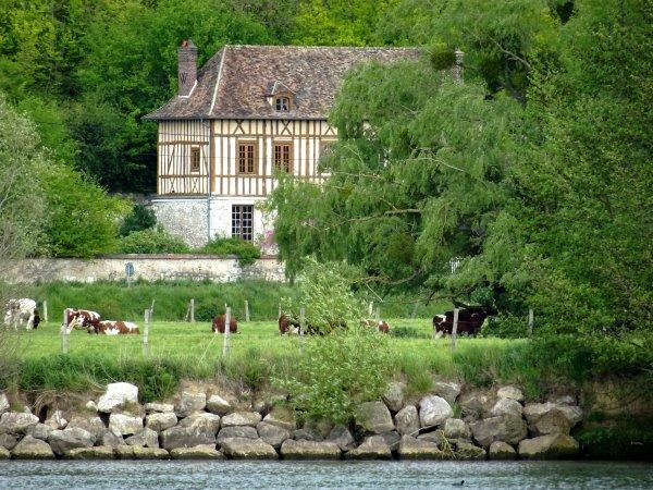 Un paysage vachement Normand