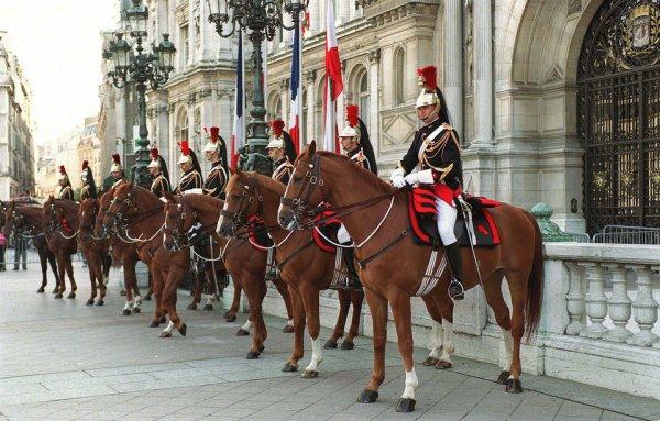 Des chevaux de la garde républicaine