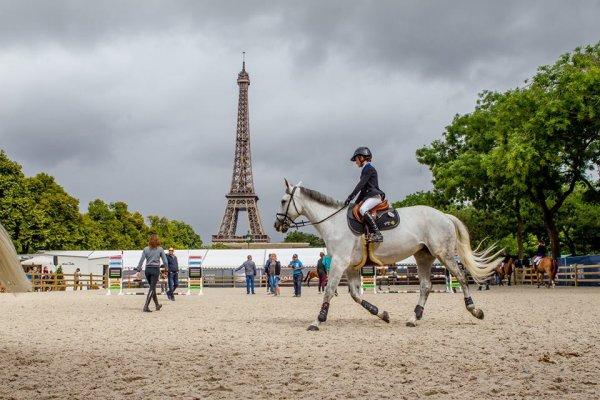 Un cheval à Paris