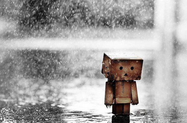 Aimer n'est pas une option dans la vie, tout le monde aime au moins une personne dans sa vie..