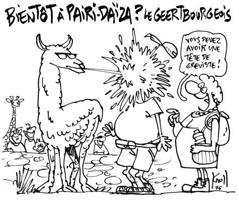 PARI-DAIZA.