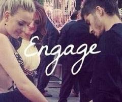 Zerrie is fake, introduction.