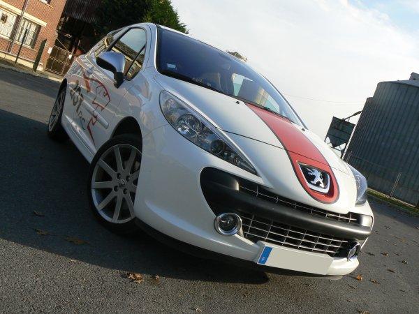 2007 // Pr.02 // Peugeot 207 RC (2007)