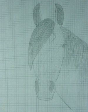 Mes dessins =)