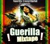 Guerilla Mixtape / 16 - Tivybz - Fo - Frè-  Guerilla Mixtape 2k11 (2011)