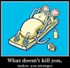 what does t  kill  you      make  you   stronger    :D