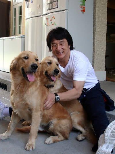 jackie et 2 chiens