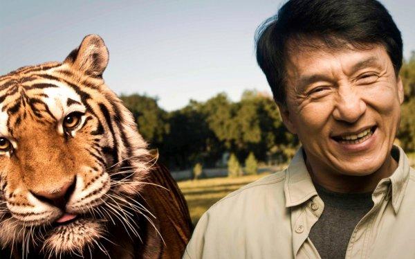 jackie chan et le tigre