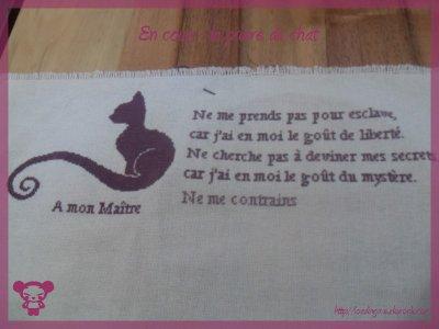 Avancement prière du chat