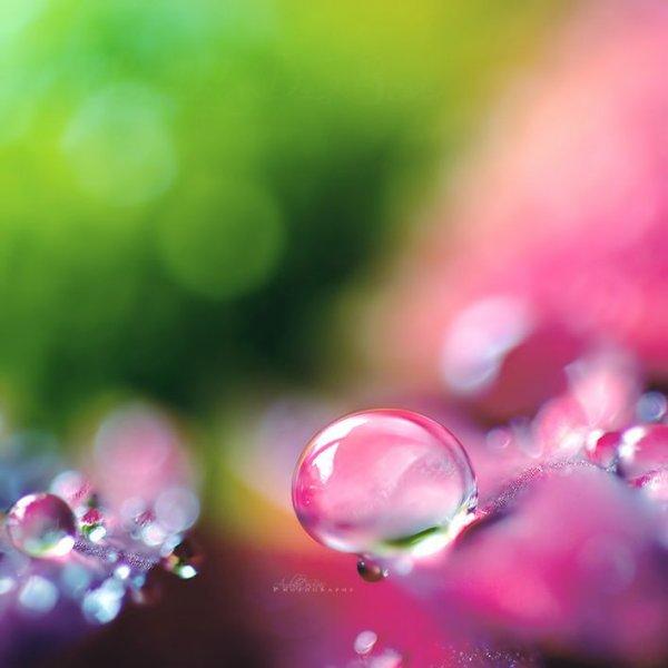 Enfermé dans ma bulle...