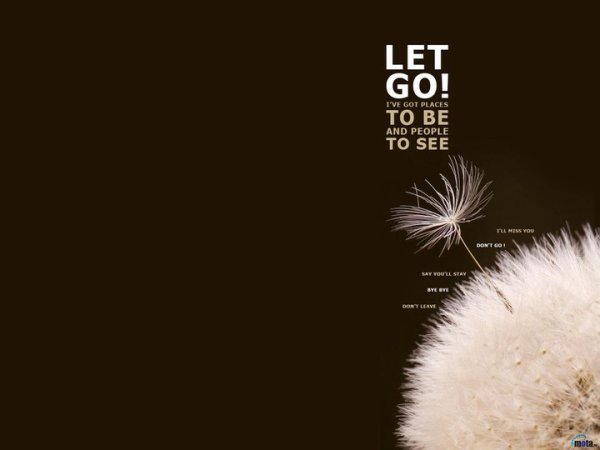 Let You Go..