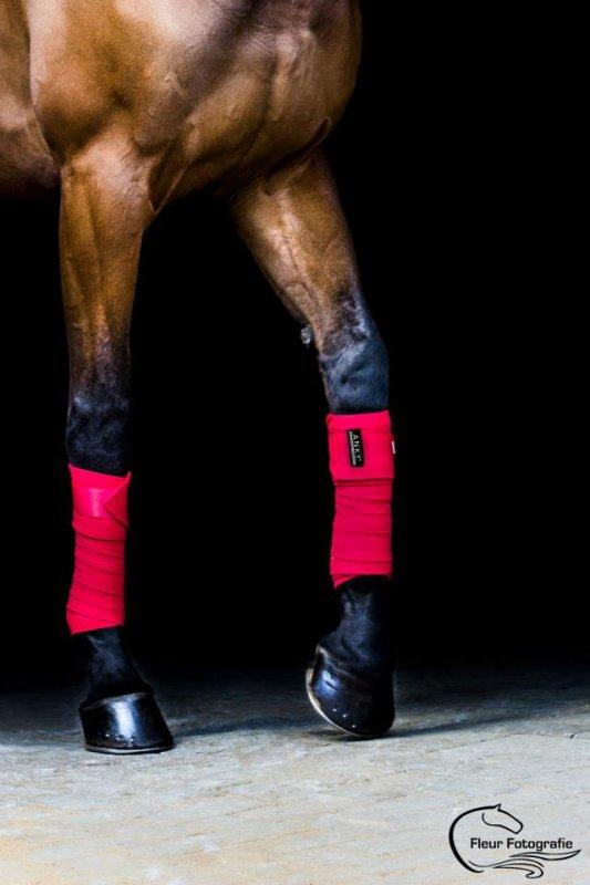 on ne peut pas prétendre maîtriser un cheval tant que l on ne se maîtrise pas soi même  .